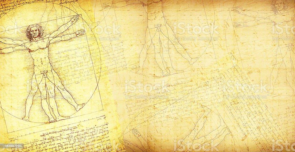 Vitruvian Man vector art on vintage style paper background vector art illustration