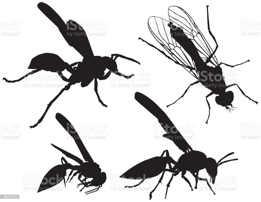 Wasp Silhouettes ( Vector ) royalty-free stock vector art