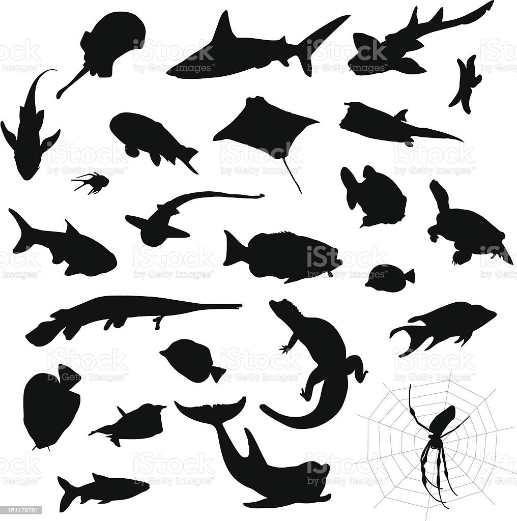 Water animal, fish silhouettes vector art illustration