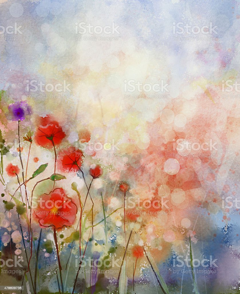 Water color painting red poppy flowers. vector art illustration