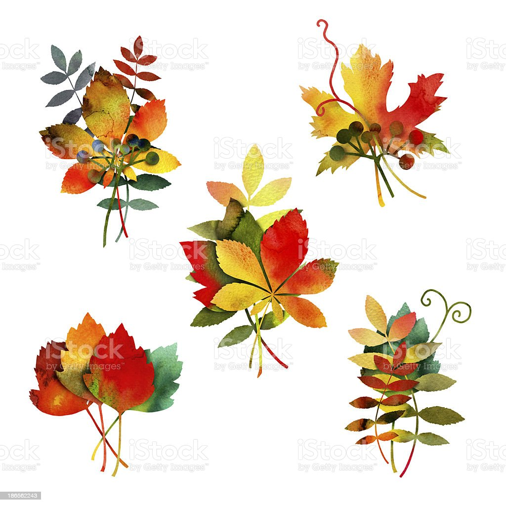 Watercolor Autumn Leaves Bouquet royalty-free stock vector art