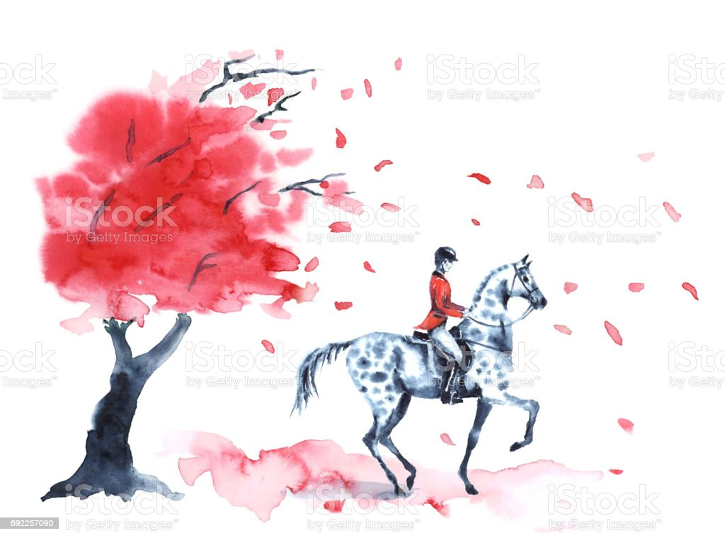 Watercolor autumn tree with red leaves and rider and on dapple grey horse on white. vector art illustration