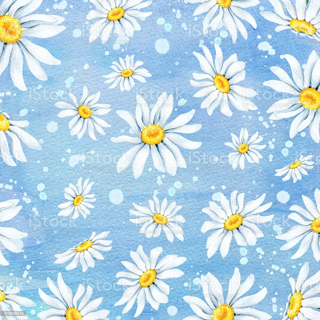 Watercolor background with chamomile flowers on blue vector art illustration