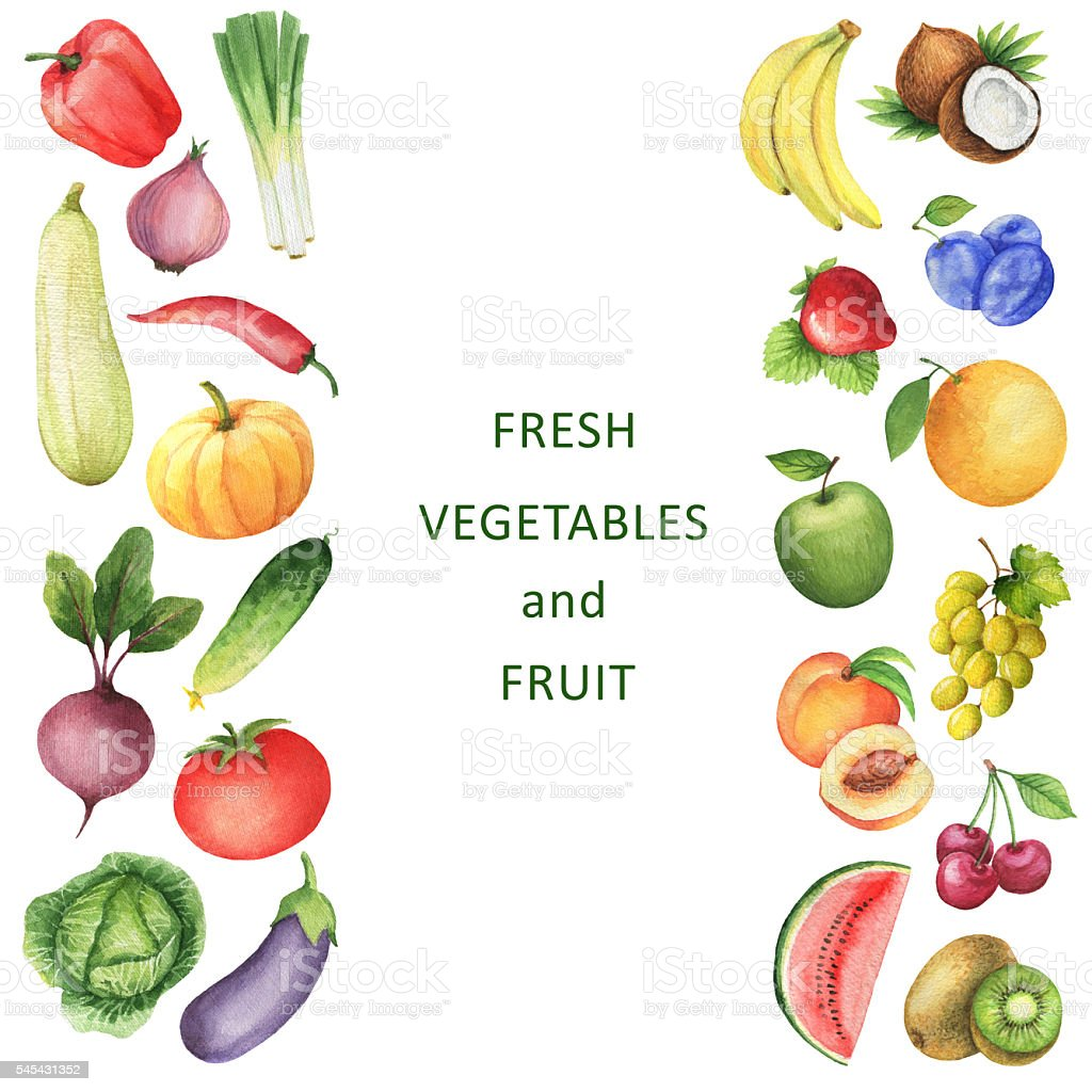 Watercolor collection of vegetables and fruits. vector art illustration