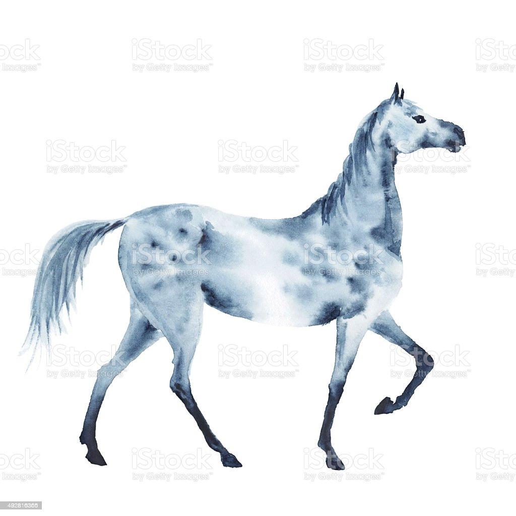 Watercolor dapple grey horse vector art illustration