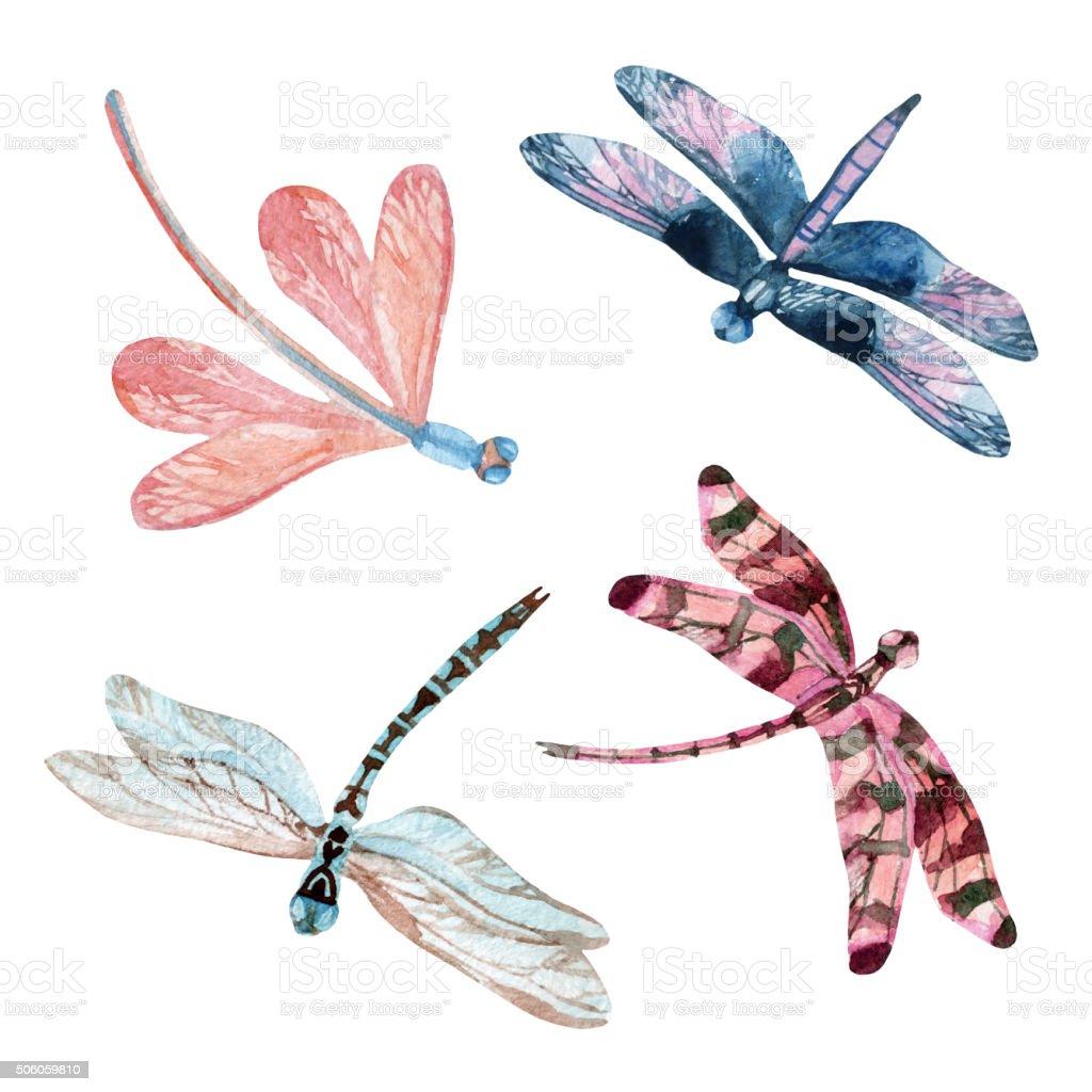 Watercolor dragonfly set vector art illustration