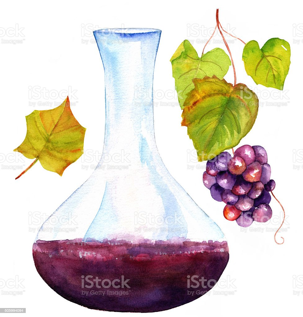 Watercolor drawings of wine decanter, vine leaf, and grapes vector art illustration