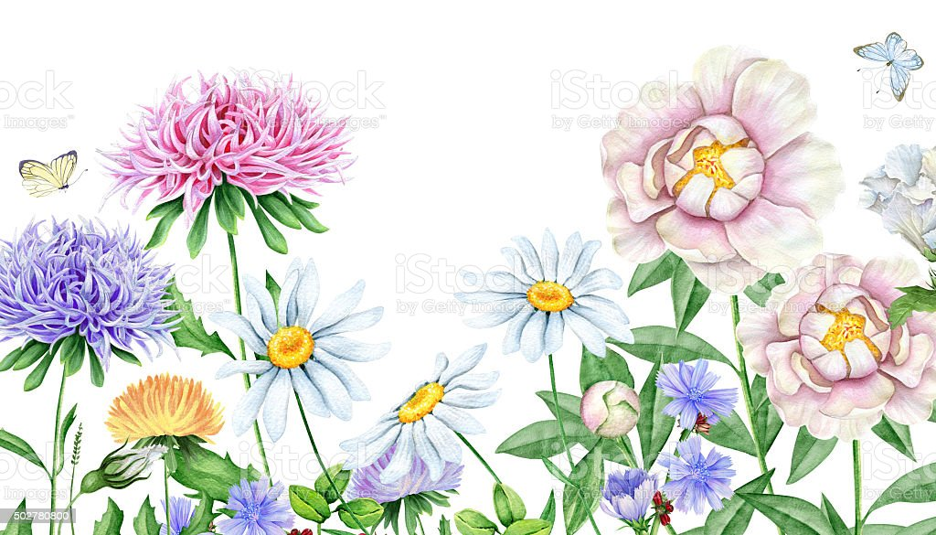 Watercolor floral image vector art illustration