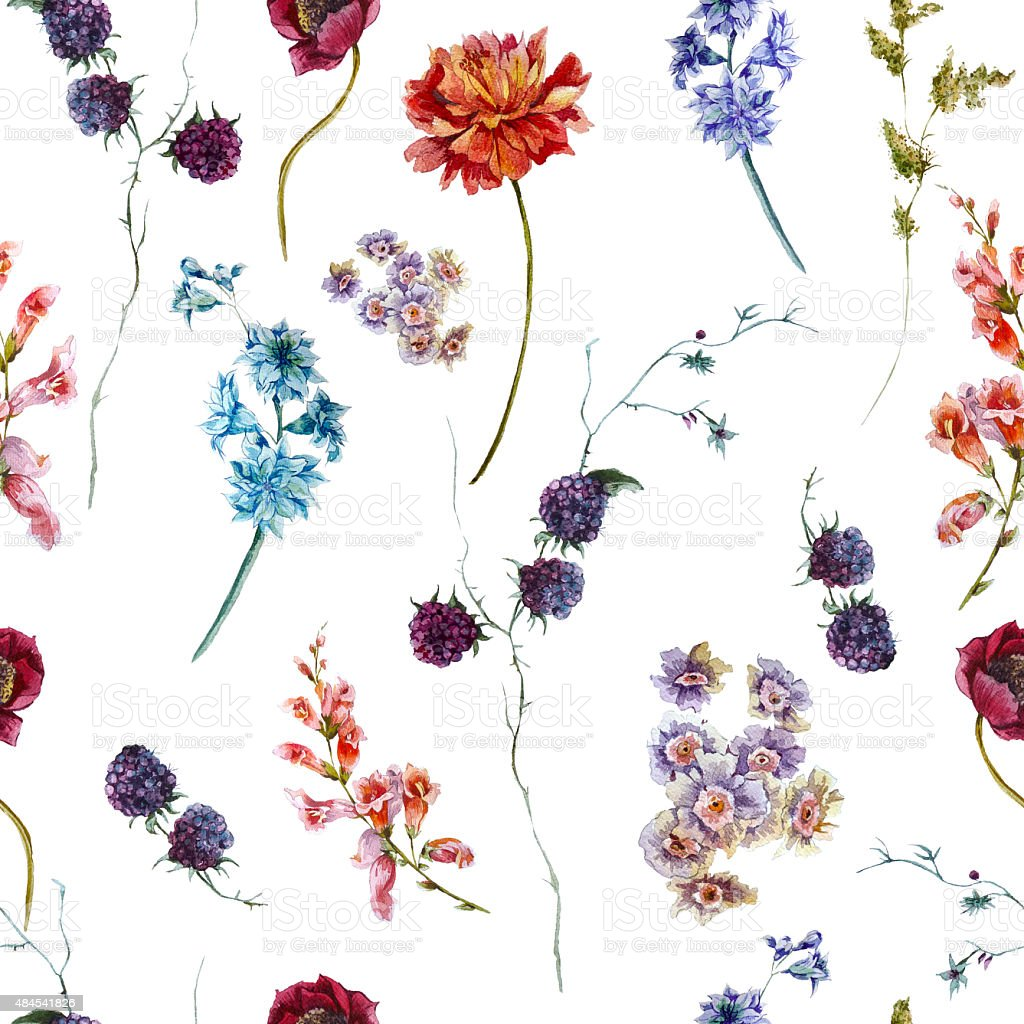 Watercolor floral seamless pattern with wildflowers vector art illustration