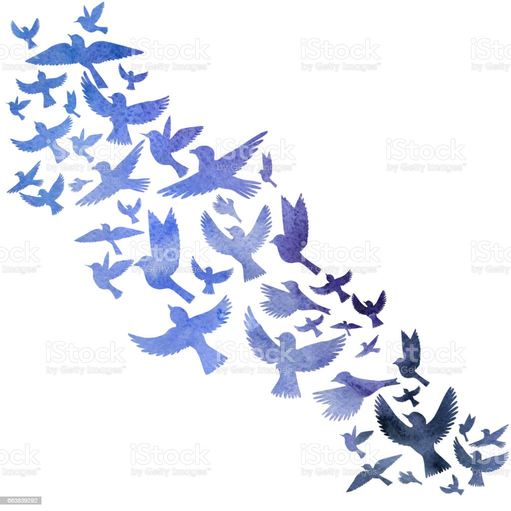 Watercolor Flying Birds Silhouettes Gm663839292 120818659