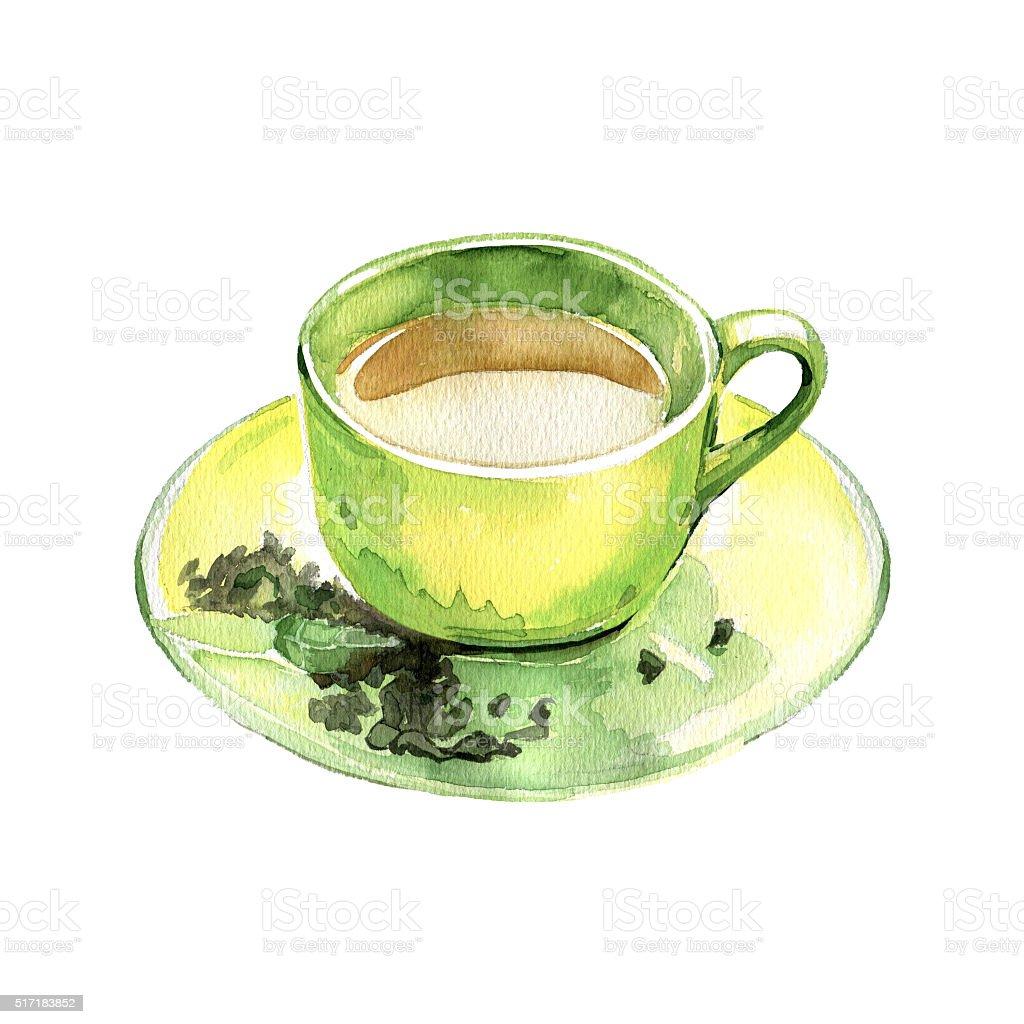 Watercolor hand drawn cup of green tea. vector art illustration