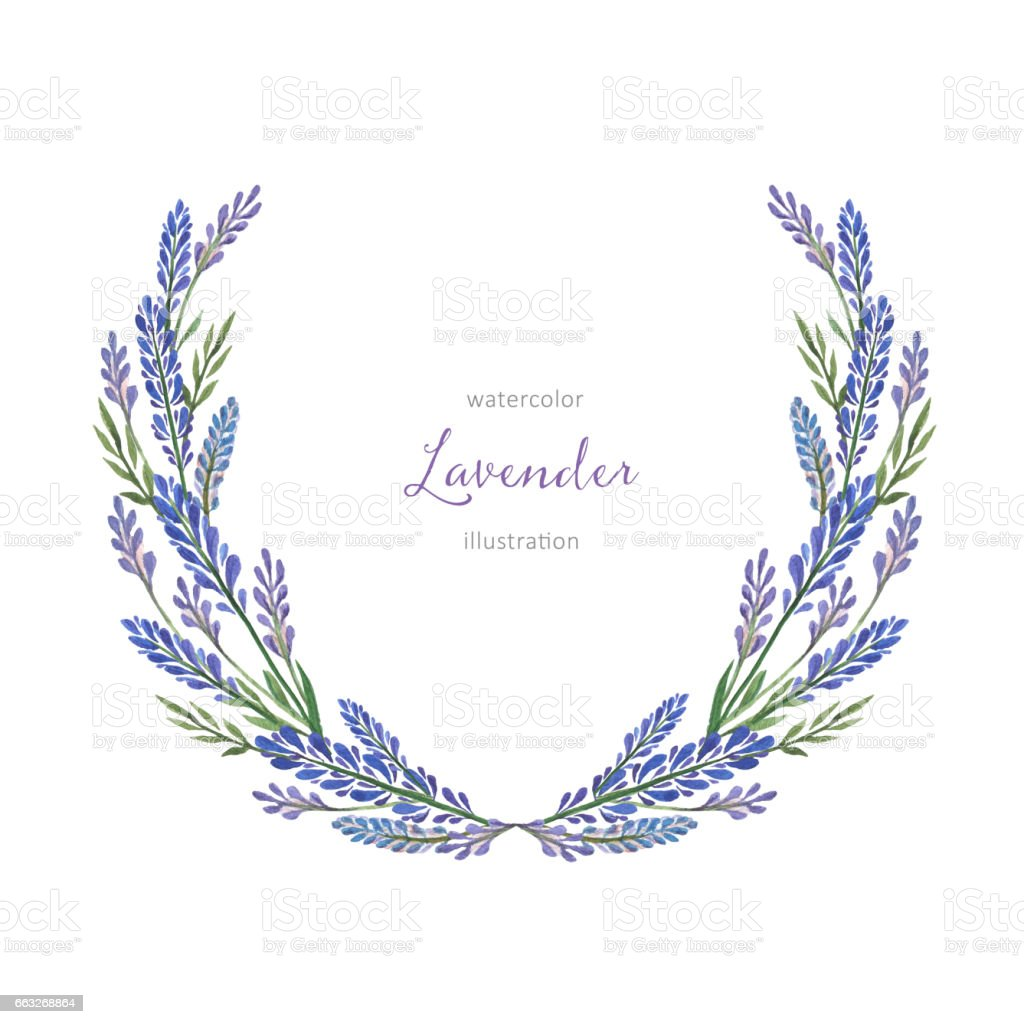 Watercolor Hand Painted Flower Wreath With Lavender Stock