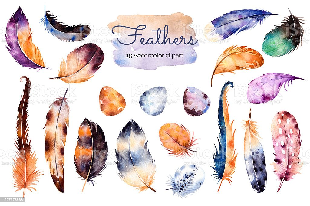 Watercolor hand painted set with 19 elements; feathers vector art illustration