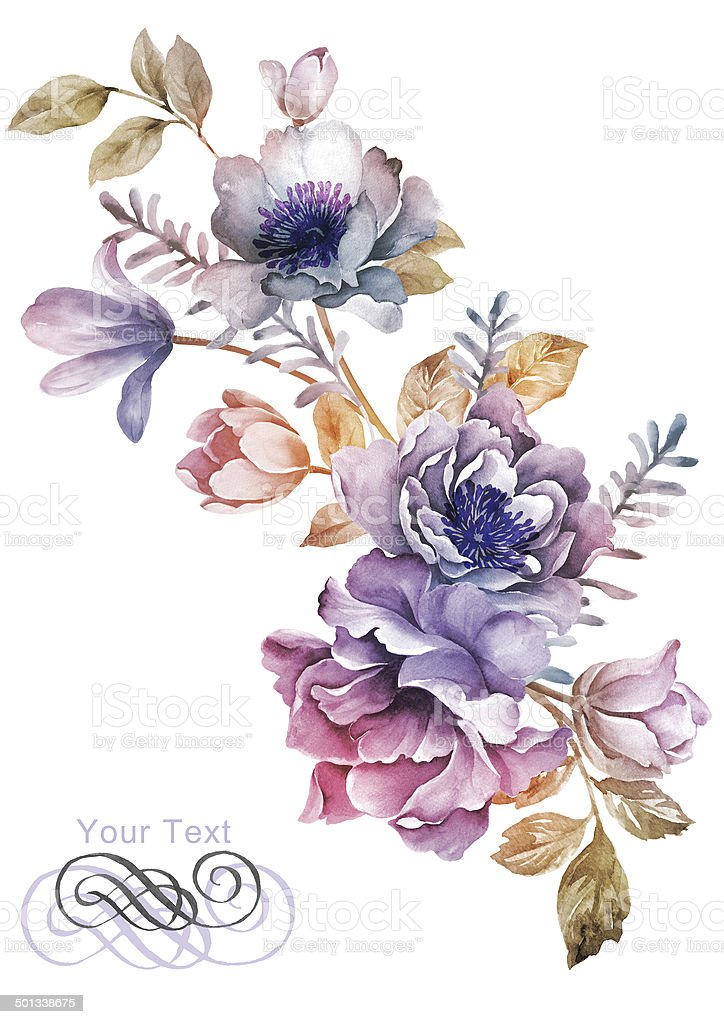 watercolor illustration flowers royalty-free stock vector art