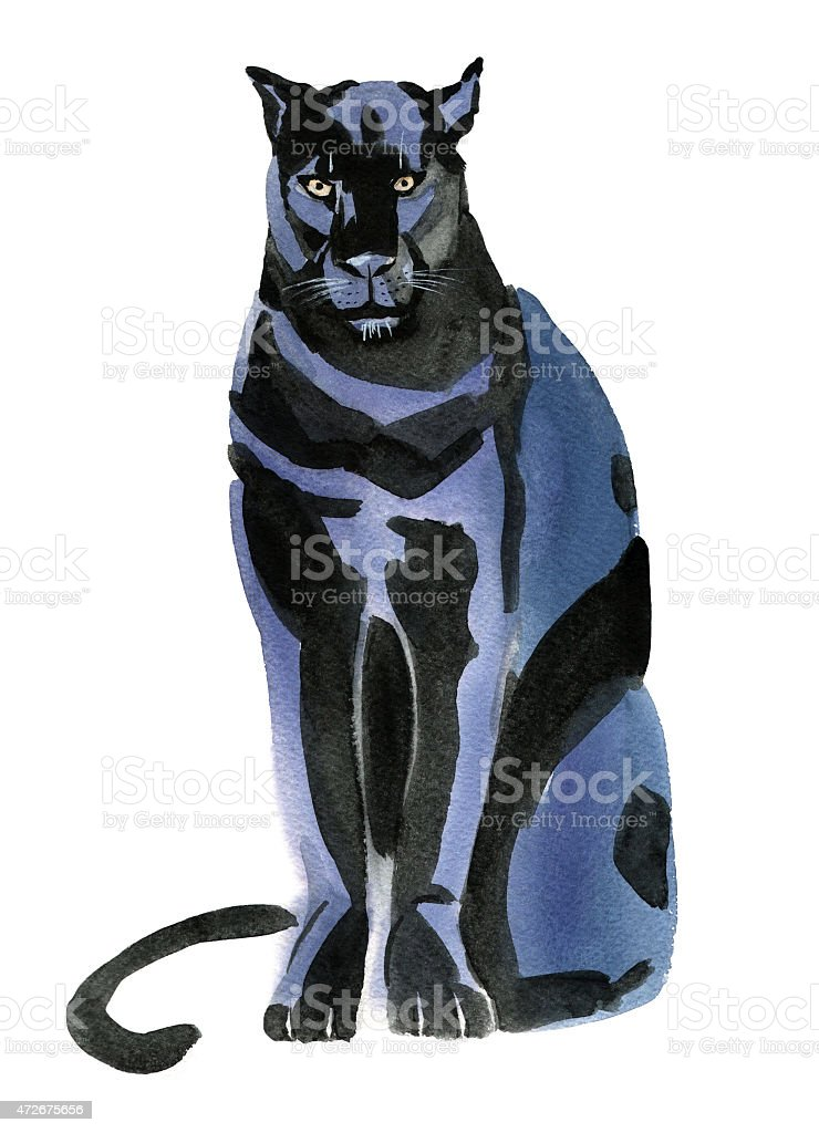 Watercolor illustration of a Panther vector art illustration