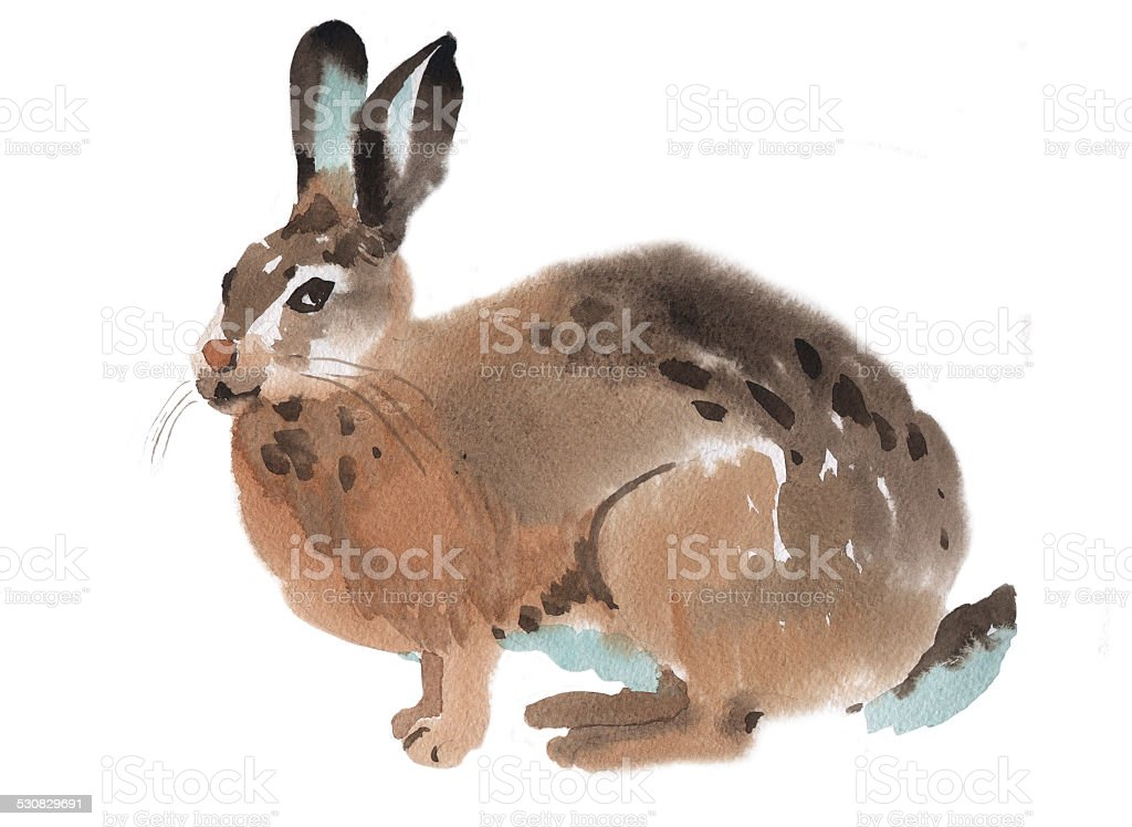 Watercolor illustration of a rabbit vector art illustration