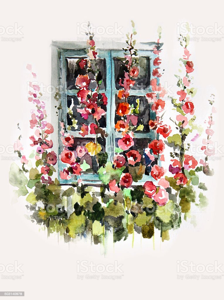 Watercolor illustration of mallow flowers and window vector art illustration