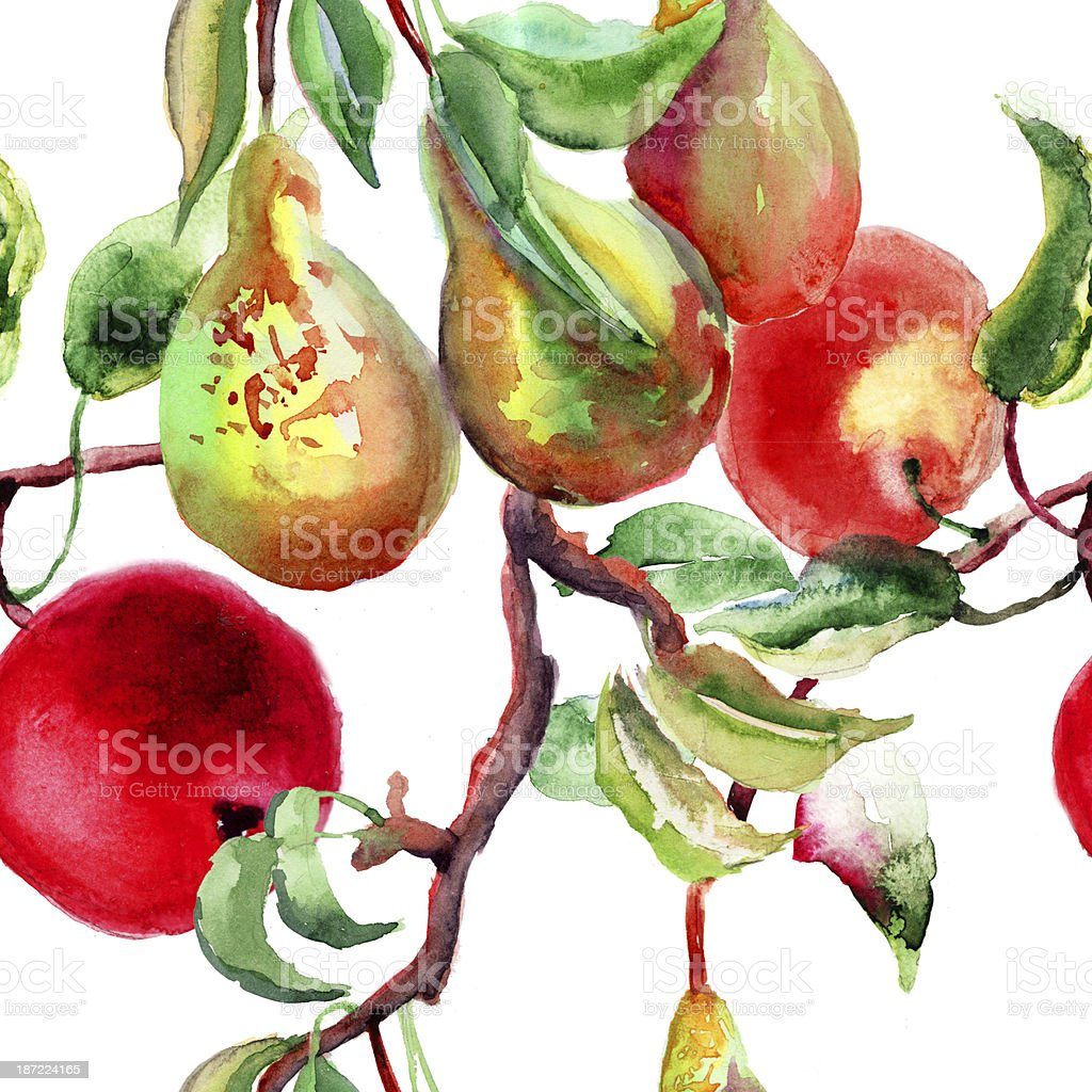 Watercolor Illustration of pears and apple royalty-free stock vector art