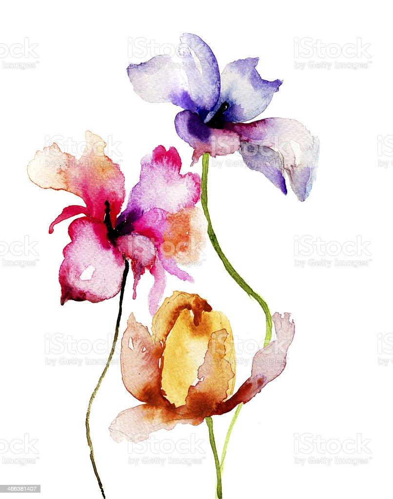 Watercolor illustration of summer flowers vector art illustration