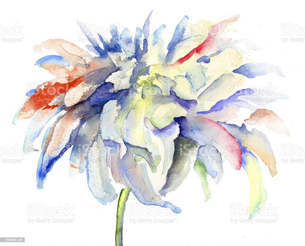Watercolor illustration with beautiful flowers royalty-free stock vector art