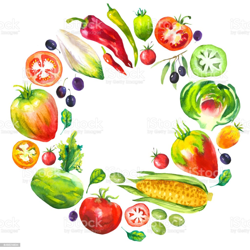 Watercolor illustration with round composition of farm illustrations. Vegetables set: artichokes, tomato, olives, cauliflower, chicory, corn, tomato, spinach, peppers. Fresh organic food vector art illustration