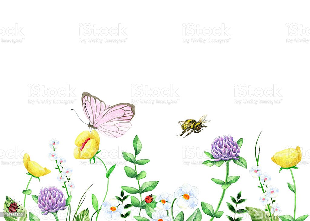 Watercolor landscape with wild flowers vector art illustration