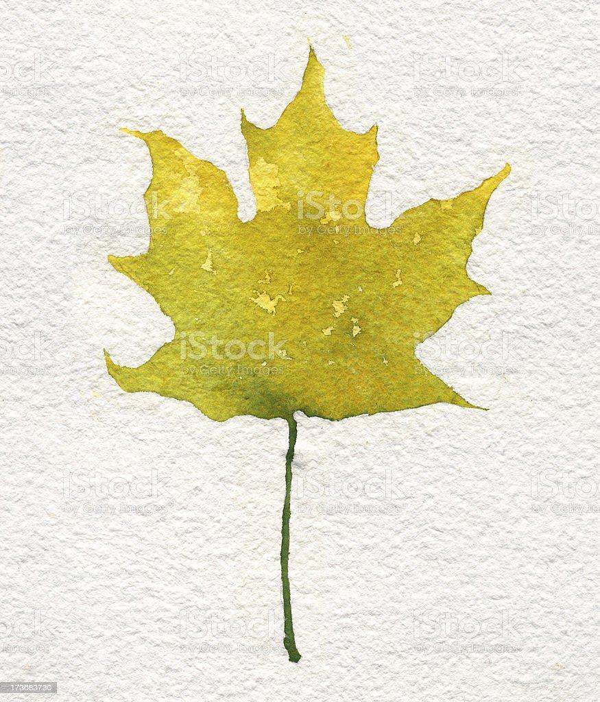 Watercolor Leaf Spring vector art illustration