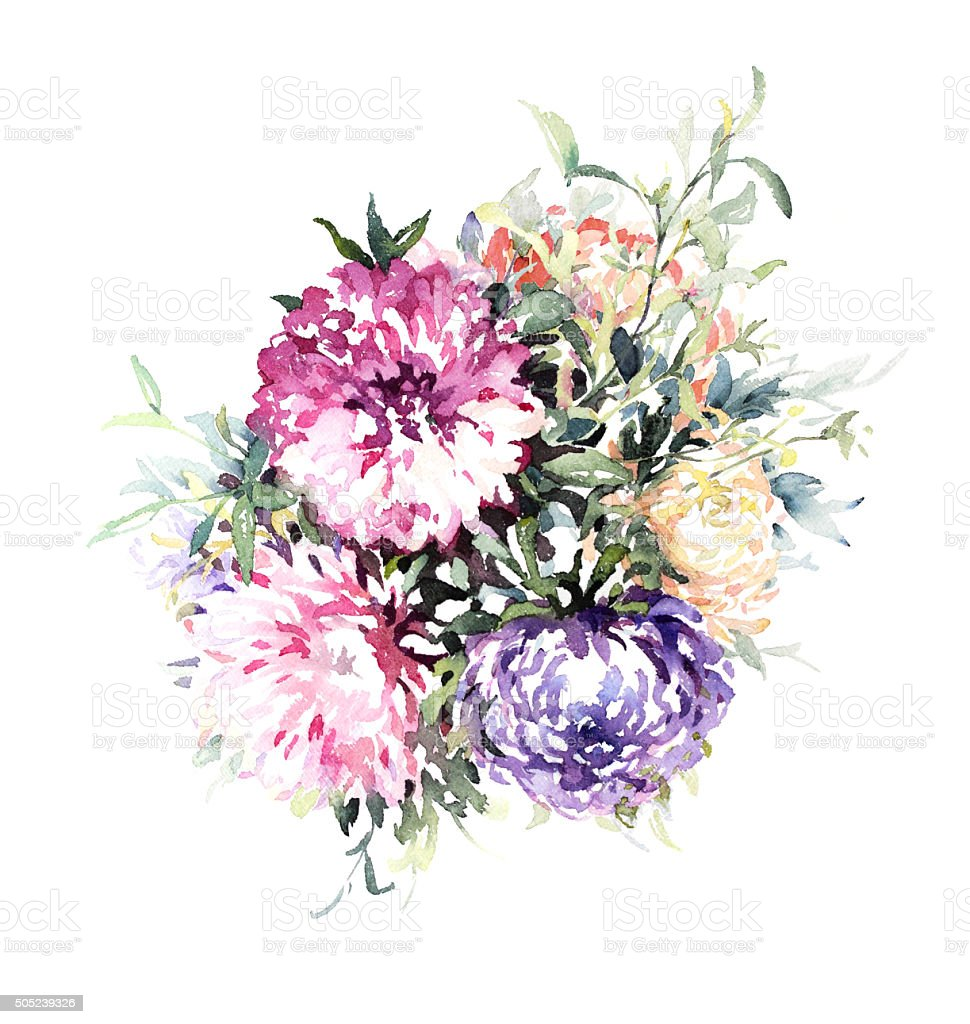 Watercolor lilac, pink and red asters. vector art illustration