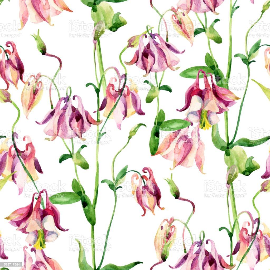 Watercolor meadow bellflowers seamless pattern vector art illustration