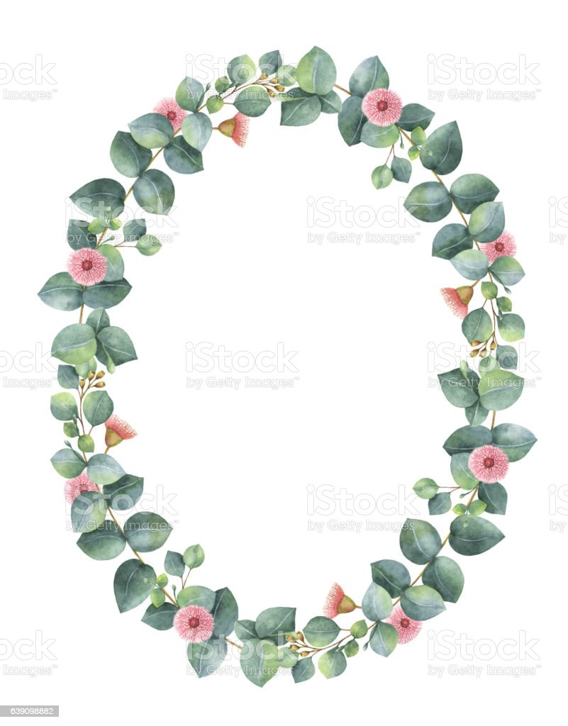 Watercolor oval wreath with silver dollar eucalyptus. vector art illustration
