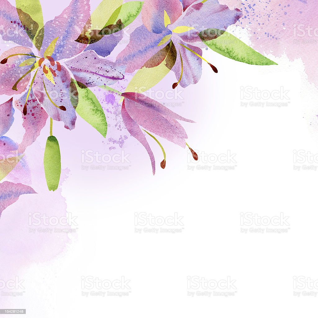 Watercolor painting lilies royalty-free stock vector art