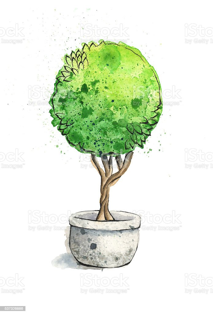 Watercolor Painting of a Green Topiary. Raster Illustration. vector art illustration