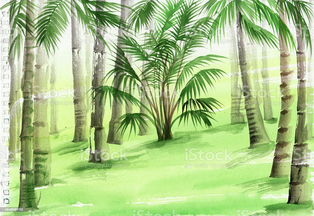 Watercolor painting of bamboo vector art illustration
