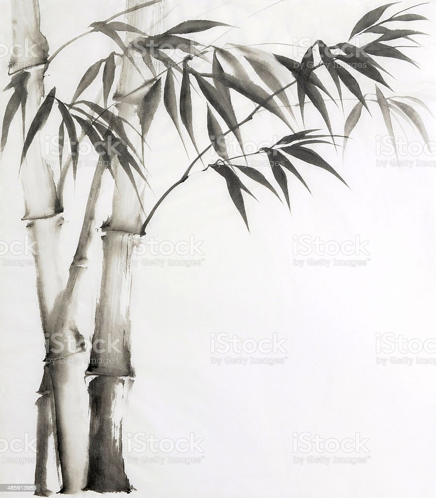 Watercolor painting of bamboo on a white background vector art illustration