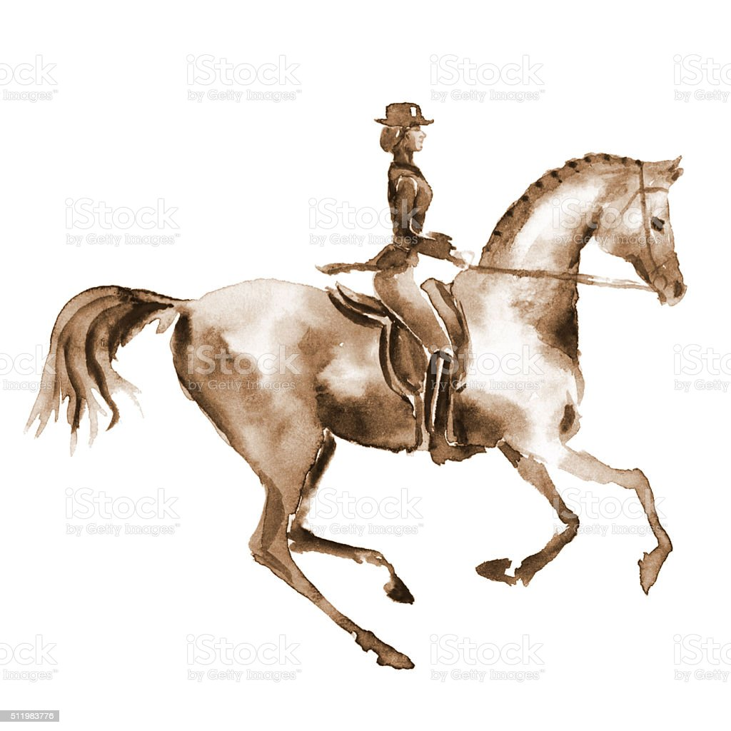Watercolor rider and dressage horse on white vector art illustration