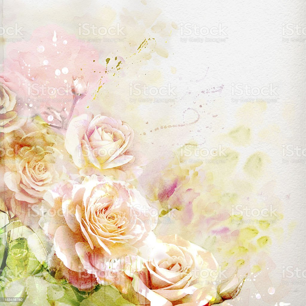Watercolor roses royalty-free stock vector art