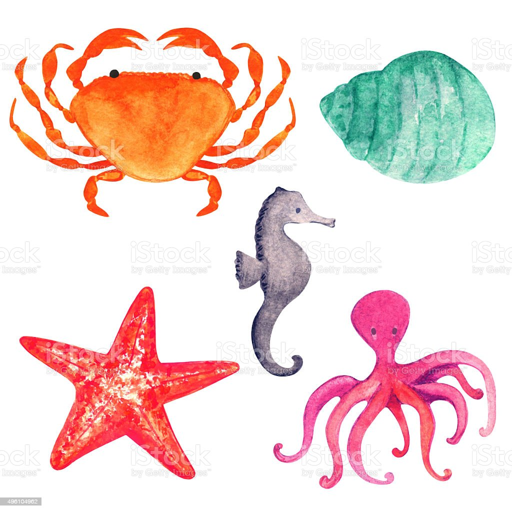 Watercolor sea animals set vector art illustration