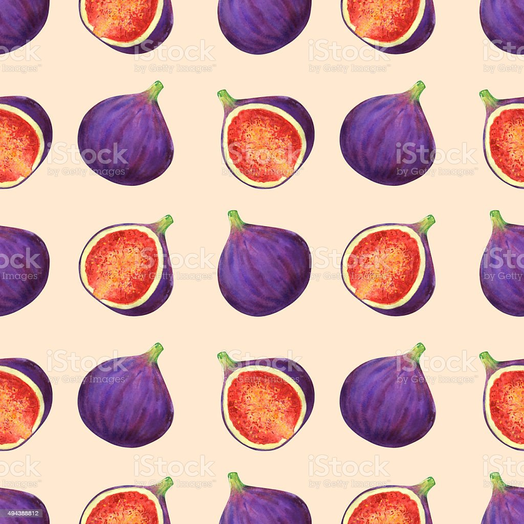 Watercolor seamless pattern with fig fruits vector art illustration