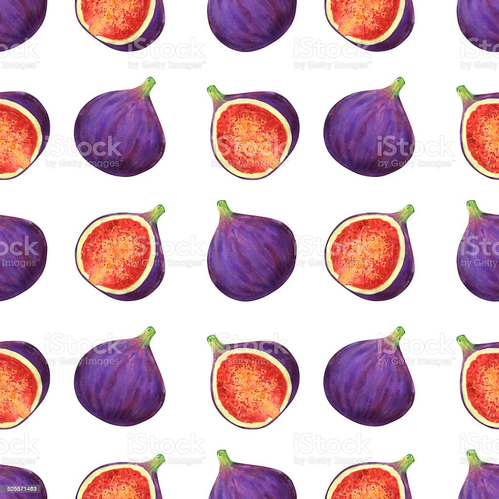 Watercolor seamless pattern with fruits figs vector art illustration