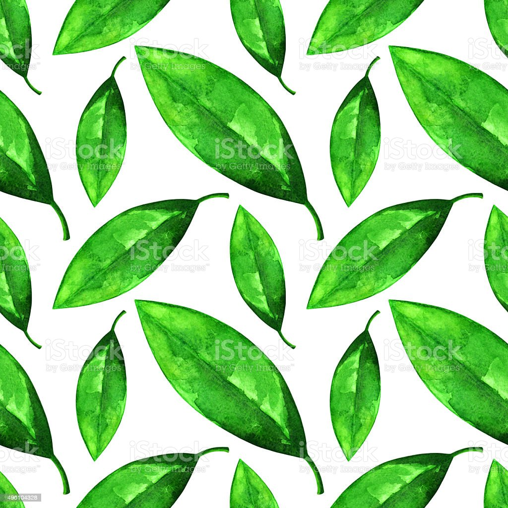 Watercolor seamless pattern with green leaves vector art illustration