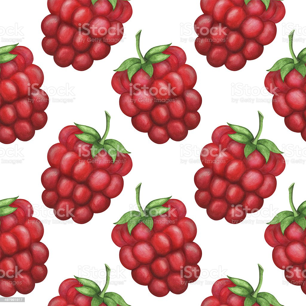 Watercolor seamless pattern with raspberries on a white background royalty-free stock vector art