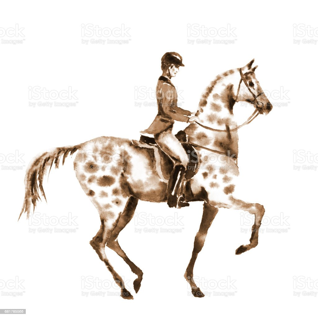 Watercolor sepia rider and horse on white. vector art illustration