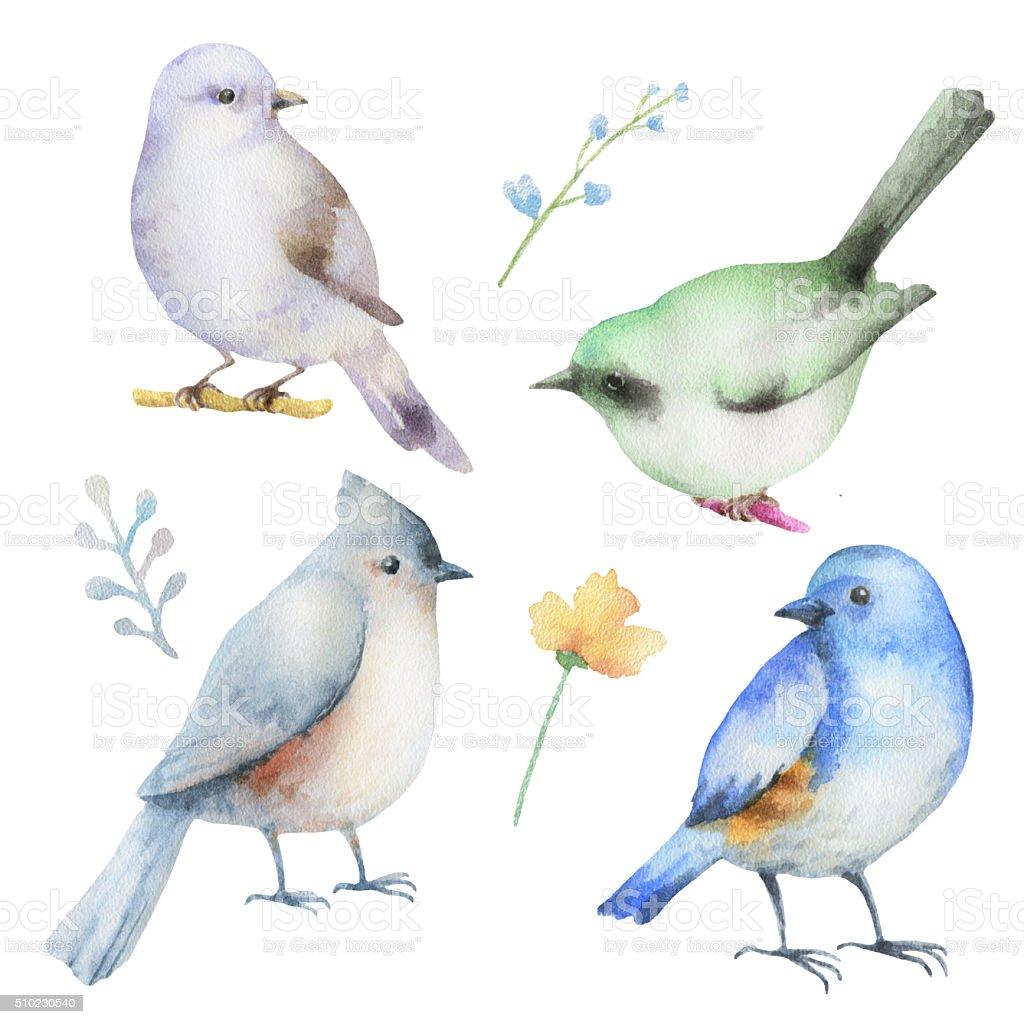 Watercolor set of birds. vector art illustration