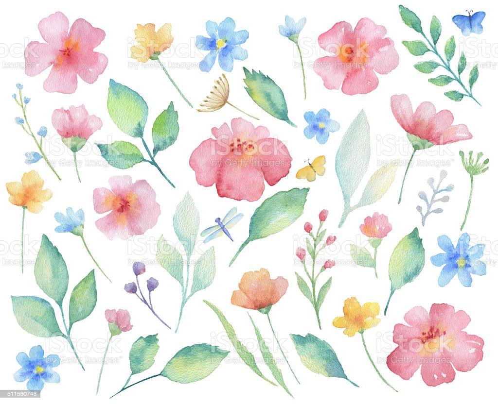 Watercolor set of flowers. vector art illustration