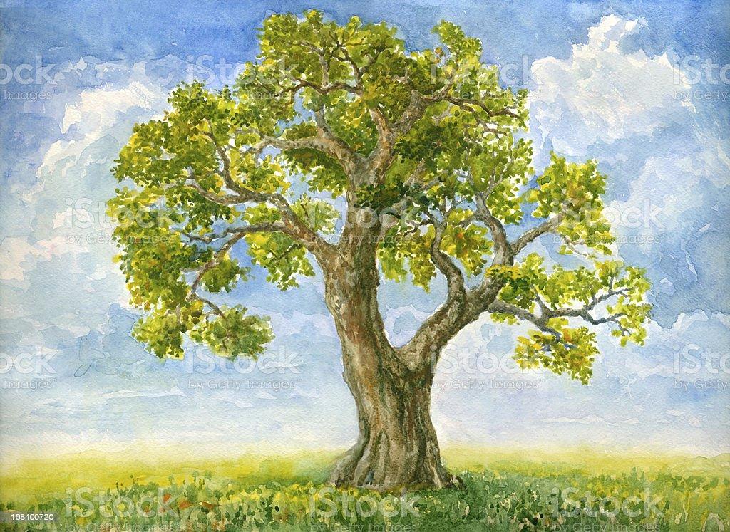Watercolor tree vector art illustration