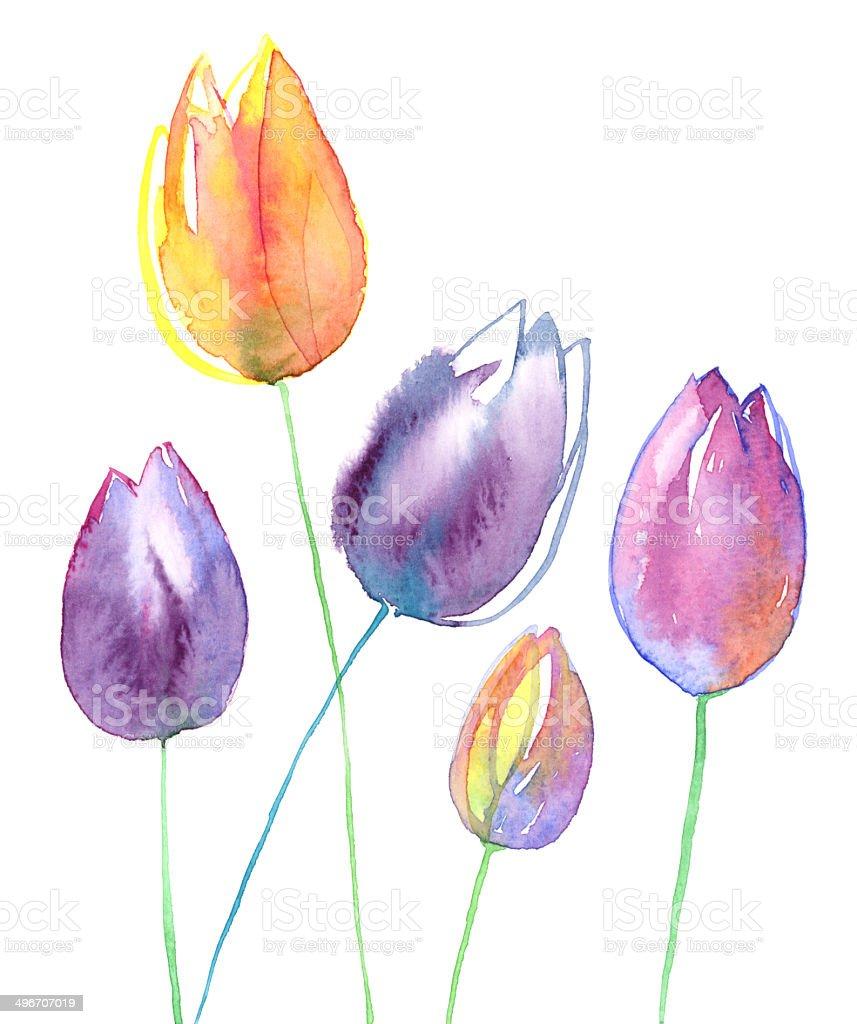 Watercolor Tulips vector art illustration