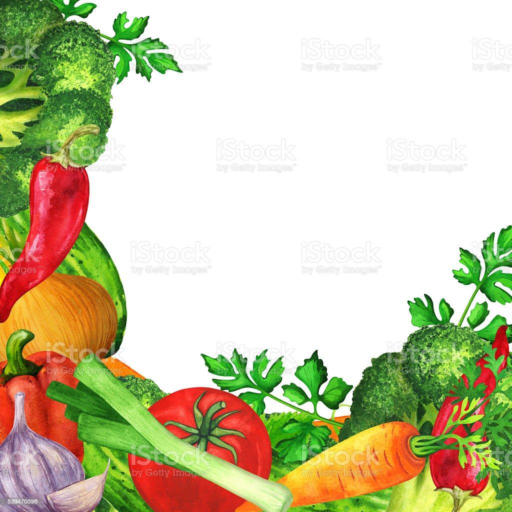 Watercolor vegetables, green leaves, mix vector art illustration