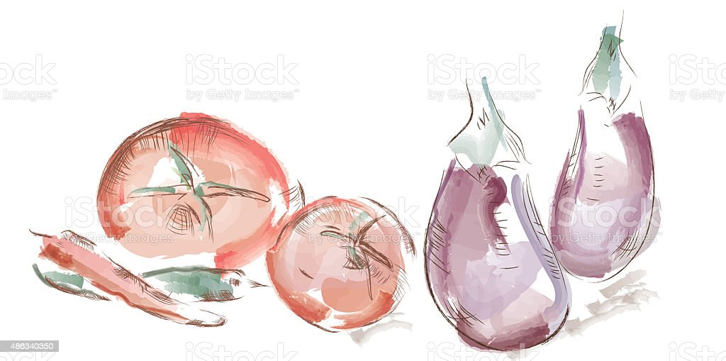 Watercolor vegetables vector art illustration