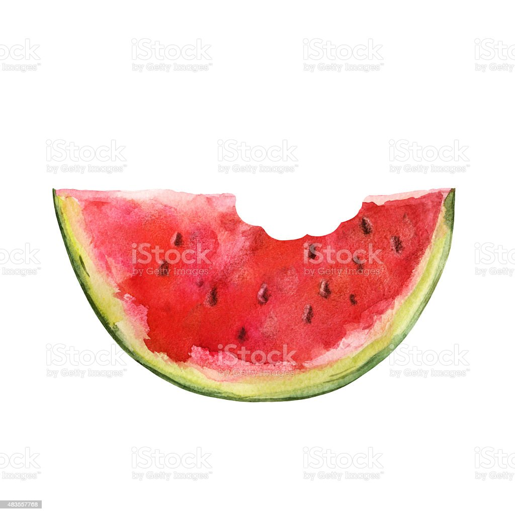 Watercolor watermelon slice with seeds and bite vector art illustration