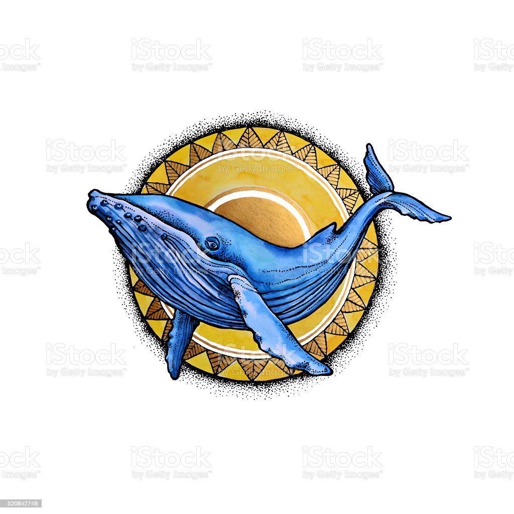 Watercolor whale and the sun vector art illustration
